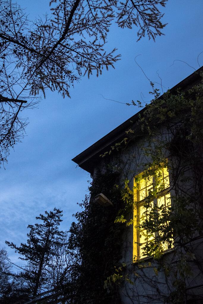 Neuer Aachener Kunstverein