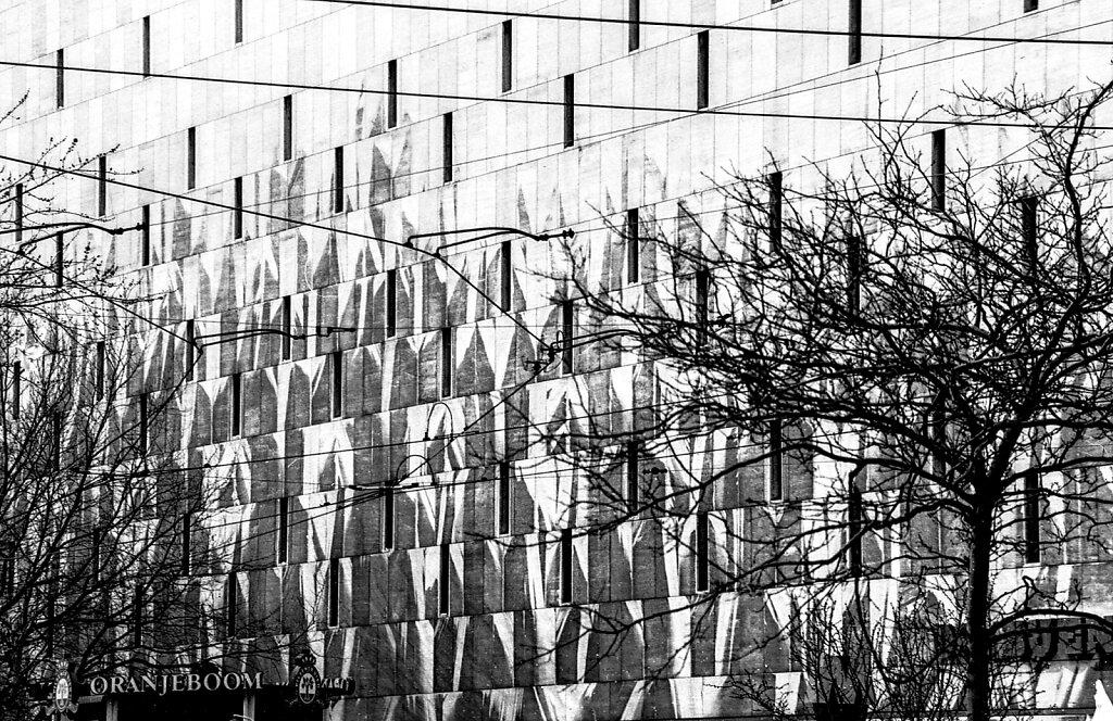 De bijenkorf; Rotterdam